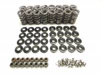 ".660"" Lift Platinum Spring Kit with Steel Retainers"